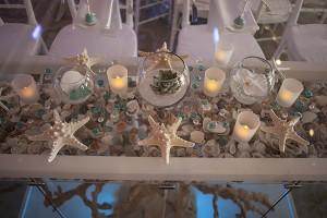 seashell decoration display