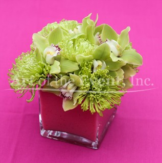Green Flowers in a pink square vase