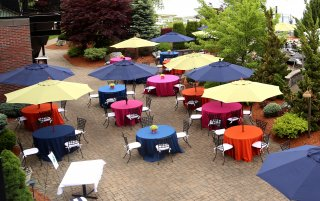 outdoor umbrella rentals